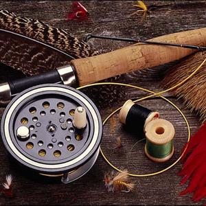 Охотничьи и рыболовные магазины Косы